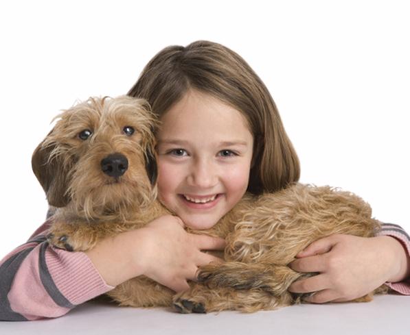 Kokosöl zur Haut und Fellpflege von Hunden bei Zecken und Milben